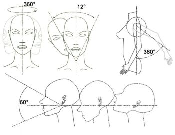 positions of display mannequin